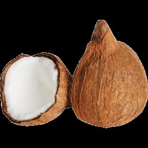 Coconuts Single