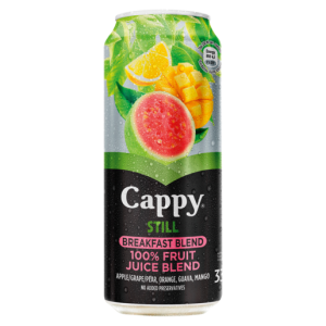 Cappy Still Breakfast Blend Flavoured Fruit Juice Can 330ml