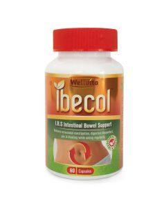 Wellvita Ibecol Intestinal Bowel Support 60 Capsules